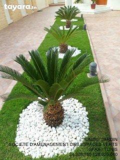 Créer votre jardin de reve