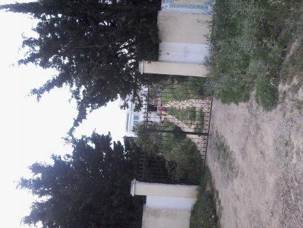 بنزرت منزل بورقيبة