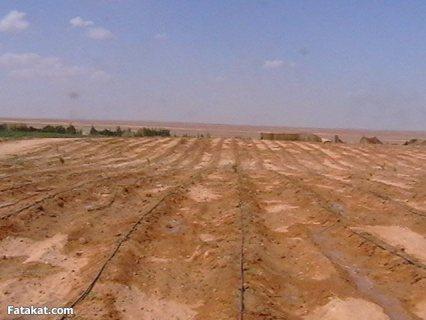 منطقة قليبية - أزمور