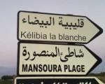 ارض للاستثمارالسياحي للبيع في شاطئ المنصوه قليبيه